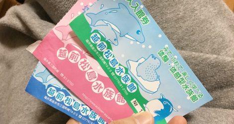 松島水族館 福井 割引券